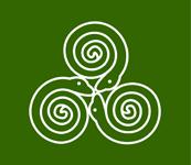 Python Ireland Logo