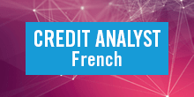 Credit Analyst French